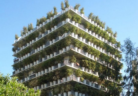 UAE: French firm planning Dubai 'Flower Tower'