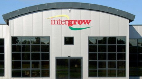 US (NY): Intergrow Greenhouses in line for National Grid funding