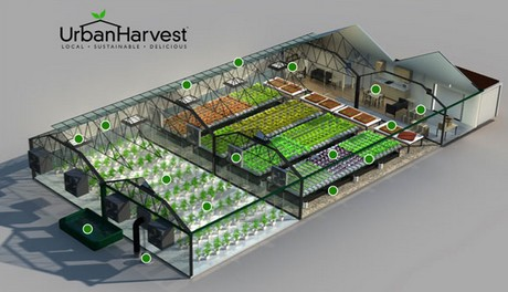 UrbanHarvest Selects LumiGrow LED Technology