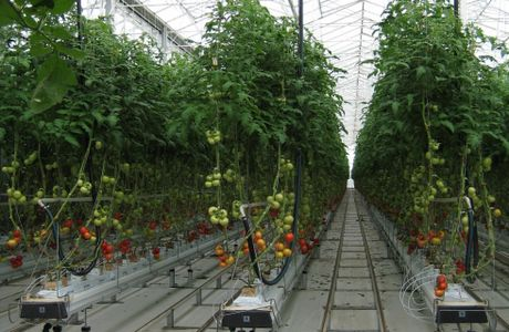 high tech greenhouse research facility for australian