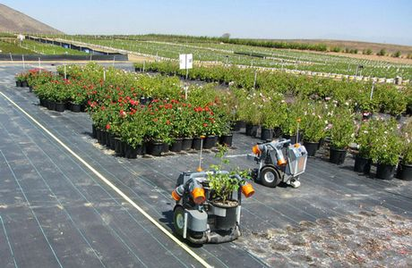 John Fisk Production Manager At Bailey Nurseries Minnesota Facilities Can Attest To The Industry S Woes Over Past Few Years