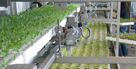 Canada: Intelligent automation at Ontario Plants ...