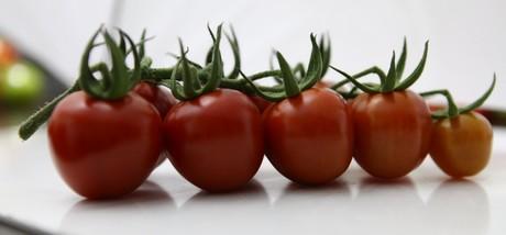 Y ksel presenta un tomate de c ctel con forma de fresa for Coctel con zumo de tomate