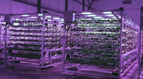 canada urban barns seeks to expand cubic farming concept