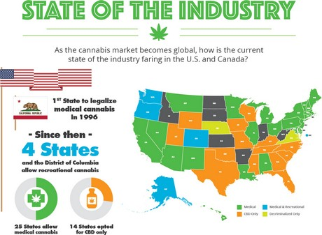 Infographic The State Of The Cannabis Industry