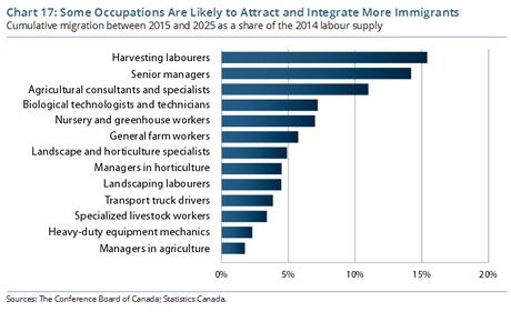 Immigrants cannot close Canada's horticultural labour gap