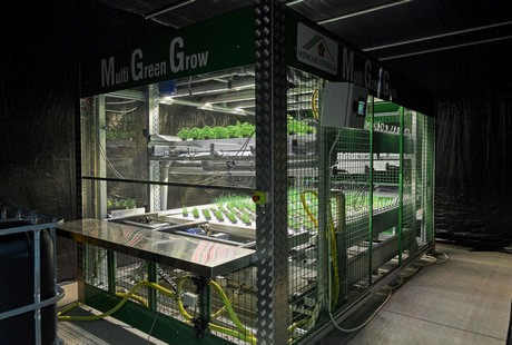 Over The Last Six Months Rosborg Used Multi Green Grow Unit Of Viemose To Basil Chives And Parsley In An Automated Multilayer Setting With Full