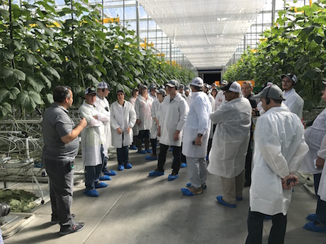 how to get into horticulture canada