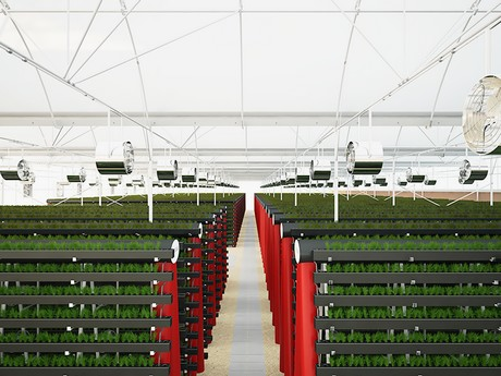 Pegasus acquires new farms in the UAE and Portugal