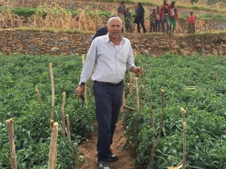 Shanty tomato advances Ethiopian agriculture