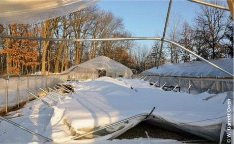 Greenhouse Snow Load And Removal