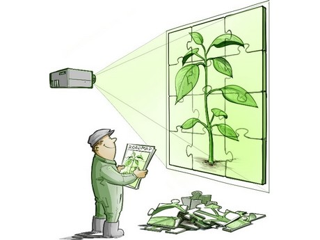 plant empowerment where physiology meets physics