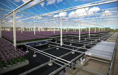Smart Farm Innovation Valley designated in South Korea